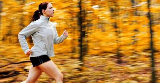 Planta dietas para bajar de peso rapidamente y sin rebote gratis podemos identificar