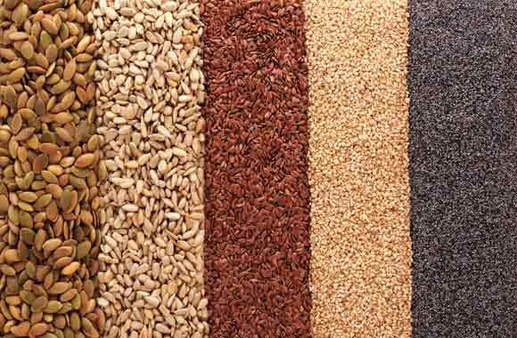 las-semillas-beneficios-fitnatura