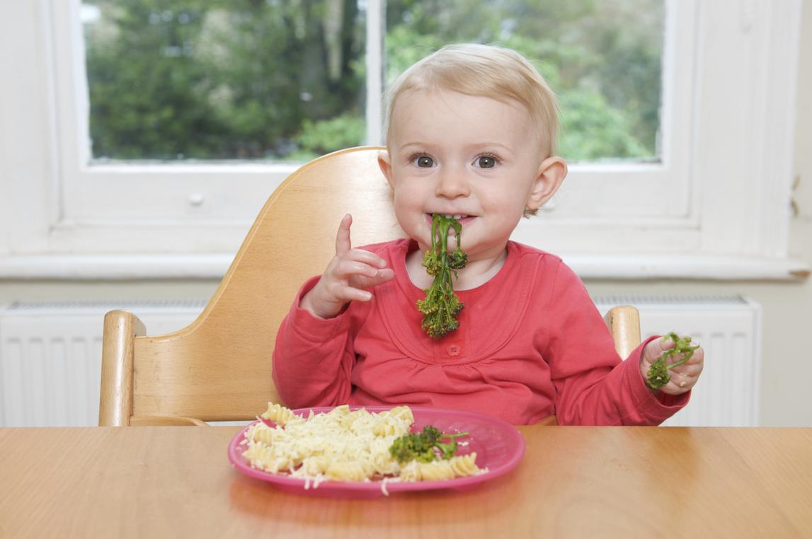 inteligencia nutricional infantil