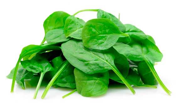 top-5-vegetales-proteinas-sistema-fitnatura